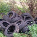 Osnabrück: Melle: Unbekannte entsorgten alte Autoreifen im Wald